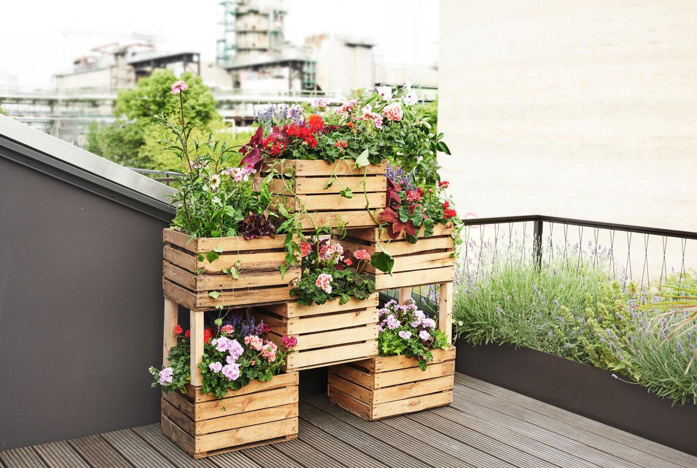 Деревянные ящики необычно смотрятся в роли садового декора